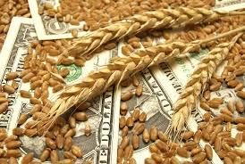Огляд світових ринків зернових та олійних від 01.07.2020