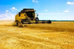 Огляд світових ринків зернових та олійних від 29.06.2020