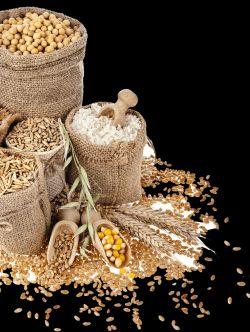 """На II аграрной конференции """"Маркетинг аграрной продукции"""" специалисты поговорят о специфике продвижения товаров в аграрной сфере"""