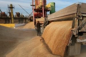 Сокращение объема экспорта украинского зерна продолжилось в феврале 2017 года