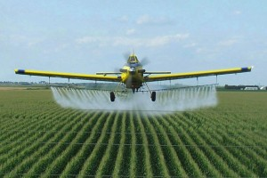 Доля контрафактной продукции на украинском рынке пестицидов оценивается в 25%