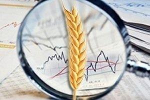 Огляд світових ринків зернових та олійних від 23.09.2020