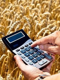 economics_v5a12a6ec81b0a