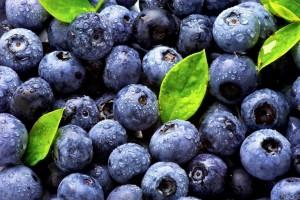 На чернику приходится почти половина экспорта мягких ягод из Украины