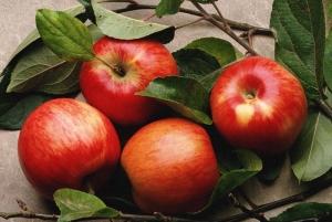 Ціни на українські яблука просіли на 70%